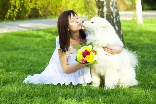 bride kissing dog