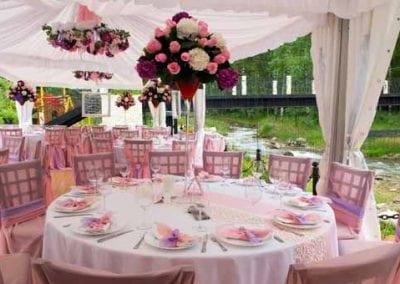 Event | Wedding Planner