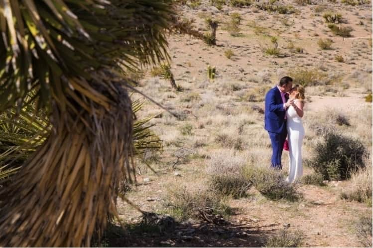 scenic desert wedding photo in Nevada